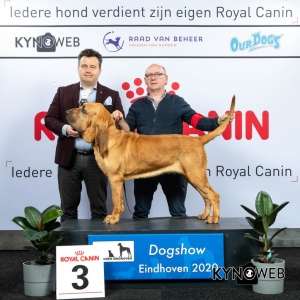 GROUP_6_3_LR_DOGSHOW_EINDHOVEN_2020_KYNOWEB_KY3_2206_20200208_16_26_54