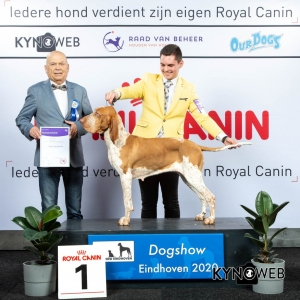 GROUP_7_1_LR_DOGSHOW_EINDHOVEN_2020_KYNOWEB_KY3_2197_20200208_16_18_49