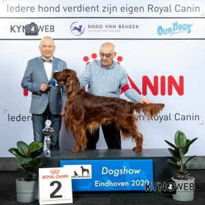 GROUP_7_2_LR_DOGSHOW_EINDHOVEN_2020_KYNOWEB_KY3_2198_20200208_16_20_01