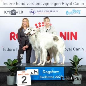 K_2_LR_DOGSHOW_EINDHOVEN_2020_KYNOWEB_KY3_2158_20200208_15_50_56