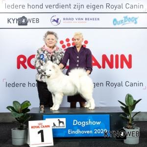 P_1_LR_DOGSHOW_EINDHOVEN_2020_KYNOWEB_KY3_2137_20200208_15_32_11