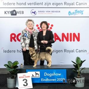 P_3_LR_DOGSHOW_EINDHOVEN_2020_KYNOWEB_KY3_2142_20200208_15_34_39