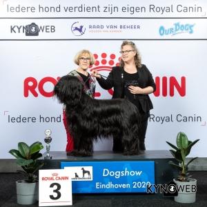 V_3_LR_DOGSHOW_EINDHOVEN_2020_KYNOWEB_KY3_2173_20200208_15_57_11