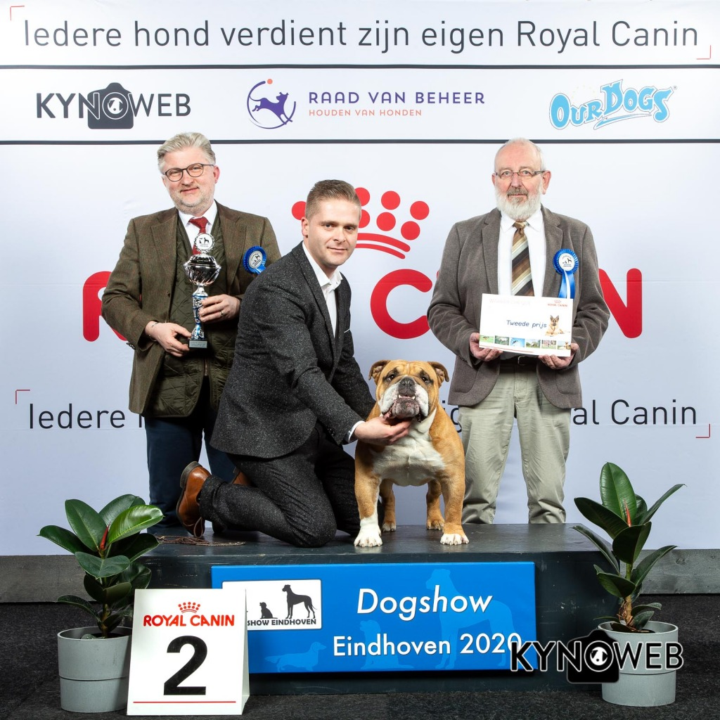 GROUP_2_2_LR_DOGSHOW_EINDHOVEN_2020_KYNOWEB_KY3_2816_20200209_16_12_38