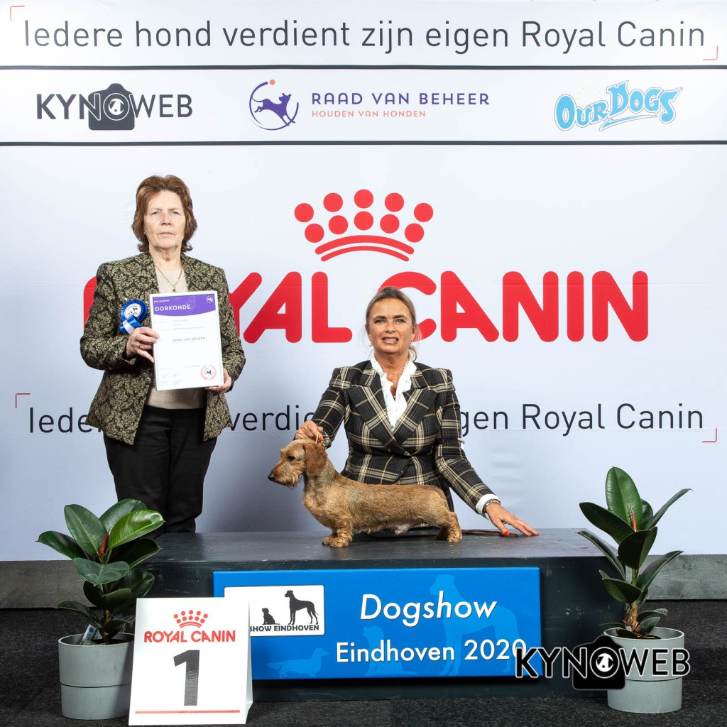 GROUP_4_1_LR_DOGSHOW_EINDHOVEN_2020_KYNOWEB_KY3_2767_20200209_15_36_11