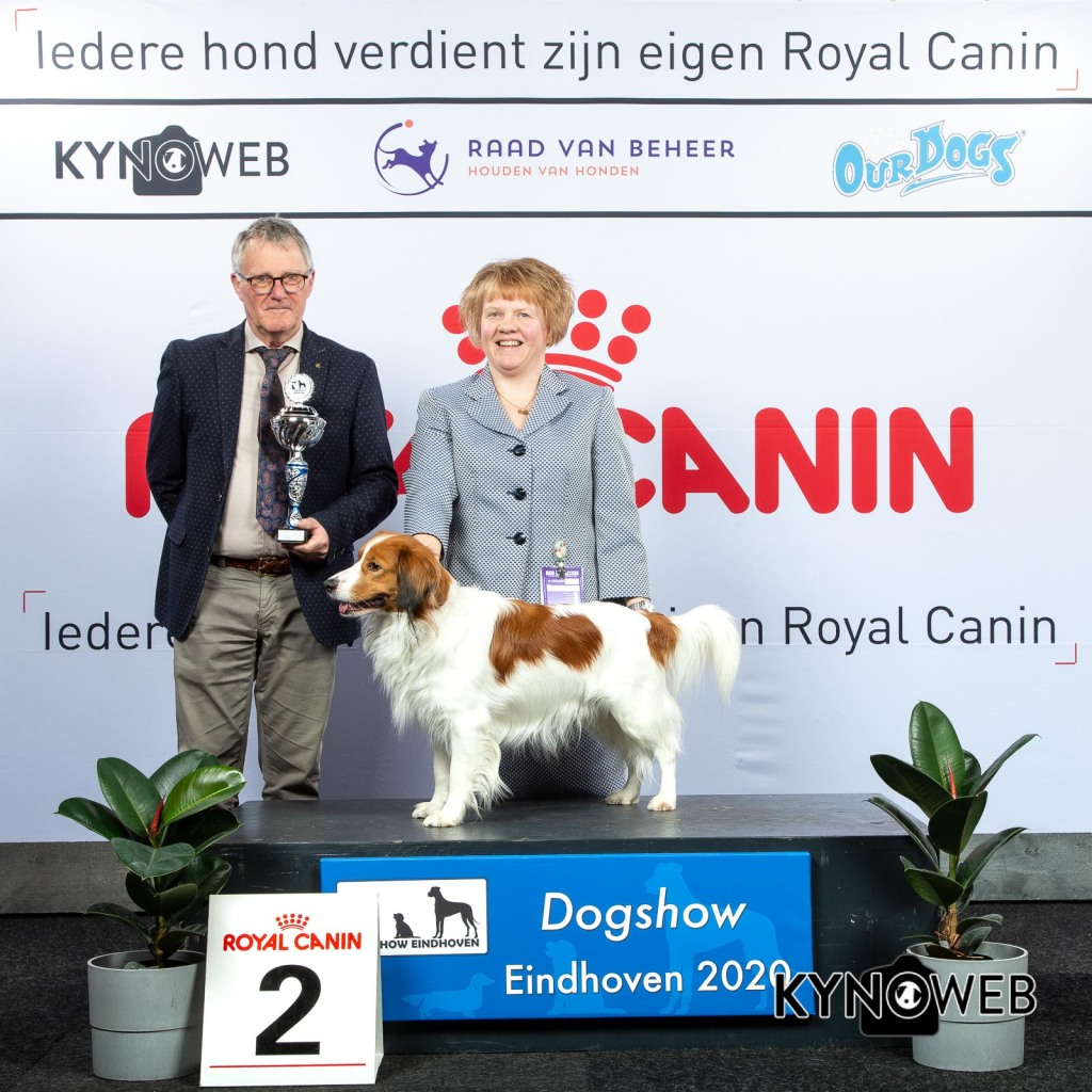 GROUP_8_2_LR_DOGSHOW_EINDHOVEN_2020_KYNOWEB_KY3_2779_20200209_15_48_18