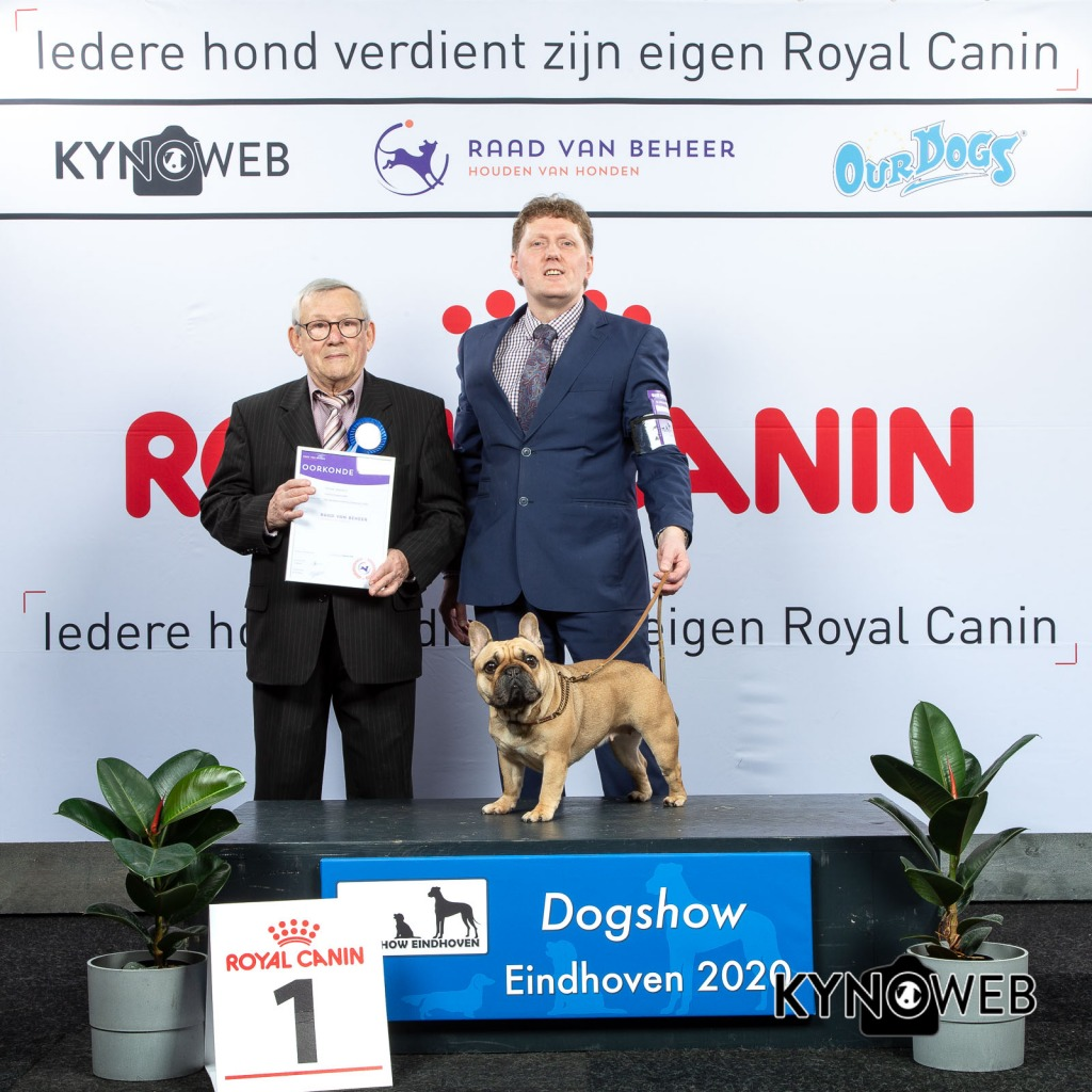 GROUP_9_1_LR_DOGSHOW_EINDHOVEN_2020_KYNOWEB_KY3_2793_20200209_15_56_34
