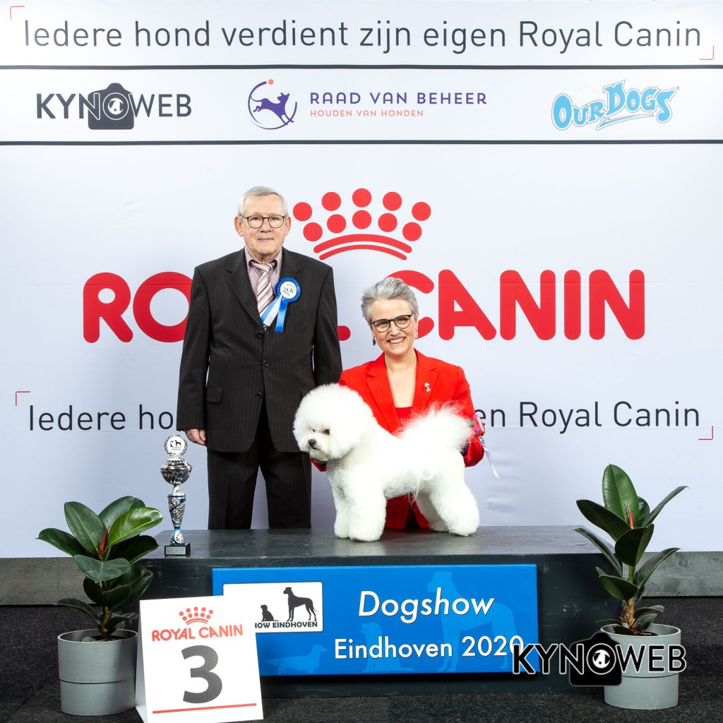 GROUP_9_3_LR_DOGSHOW_EINDHOVEN_2020_KYNOWEB_KY3_2800_20200209_15_58_31