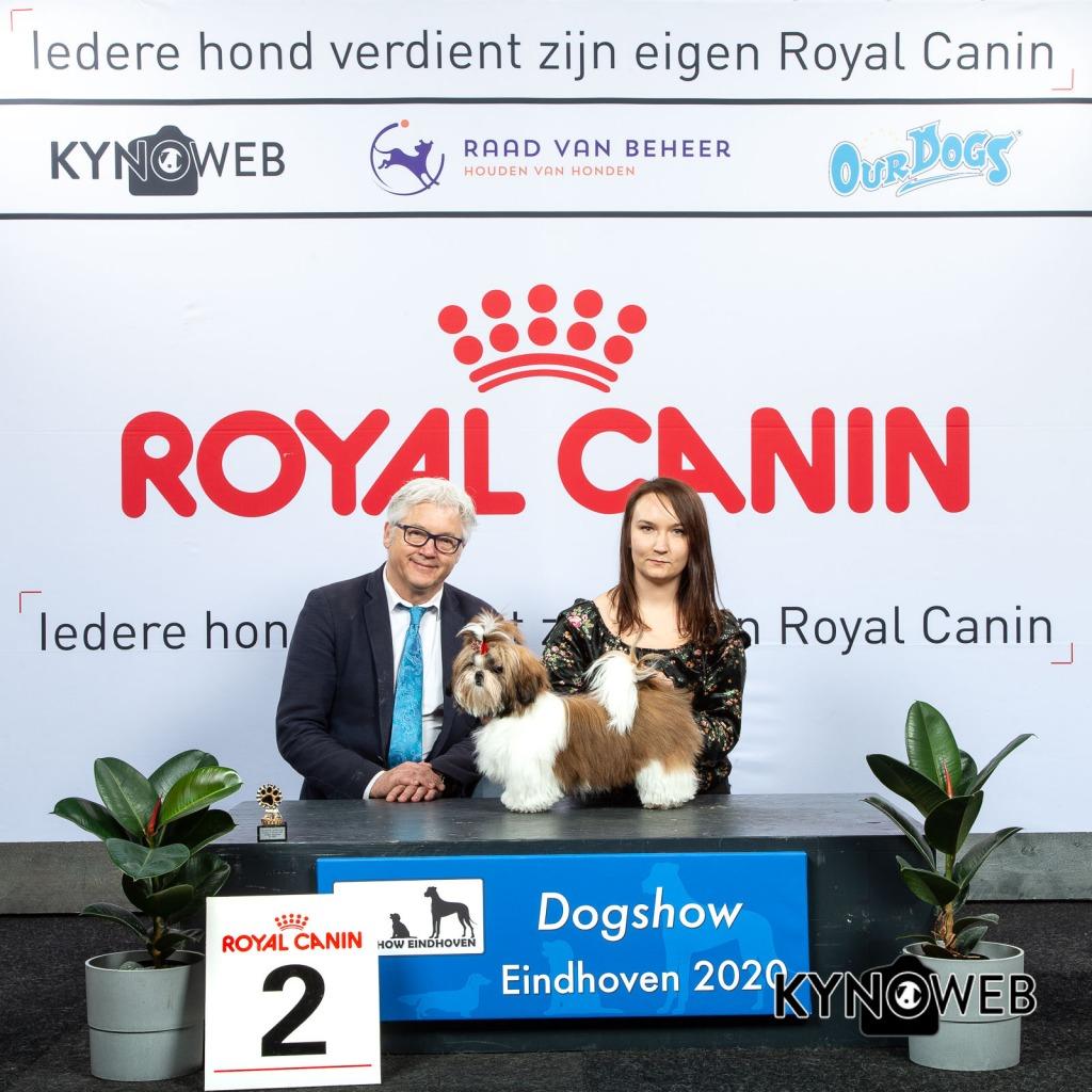 J_2_LR_DOGSHOW_EINDHOVEN_2020_KYNOWEB_KY3_2710_20200209_15_04_57