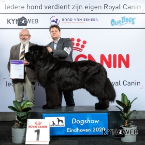 GROUP_2_1_LR_DOGSHOW_EINDHOVEN_2020_KYNOWEB_KY3_2826_20200209_16_37_13