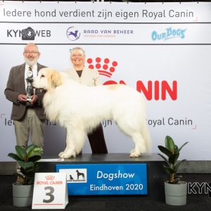 GROUP_2_3_LR_DOGSHOW_EINDHOVEN_2020_KYNOWEB_KY3_2820_20200209_16_15_28