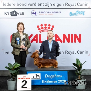 GROUP_4_2_LR_DOGSHOW_EINDHOVEN_2020_KYNOWEB_KY3_2770_20200209_15_37_06