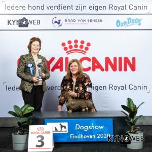 GROUP_4_3_LR_DOGSHOW_EINDHOVEN_2020_KYNOWEB_KY3_2771_20200209_15_38_21