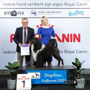 GROUP_8_1_LR_DOGSHOW_EINDHOVEN_2020_KYNOWEB_KY3_2775_20200209_15_47_03