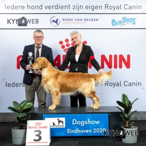 GROUP_8_3_LR_DOGSHOW_EINDHOVEN_2020_KYNOWEB_KY3_2780_20200209_15_49_58