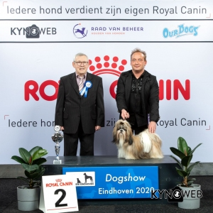 GROUP_9_2_LR_DOGSHOW_EINDHOVEN_2020_KYNOWEB_KY3_2796_20200209_15_57_36