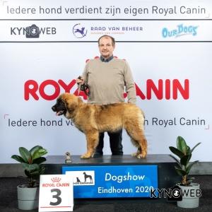 J_3_LR_DOGSHOW_EINDHOVEN_2020_KYNOWEB_KY3_2766_20200209_15_34_48