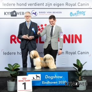 P_1_LR_DOGSHOW_EINDHOVEN_2020_KYNOWEB_KY3_2713_20200209_15_08_41