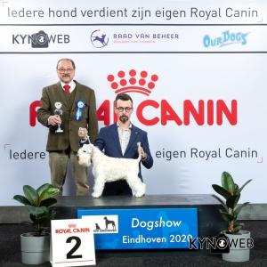V_2_LR_DOGSHOW_EINDHOVEN_2020_KYNOWEB_KY3_2738_20200209_15_18_34